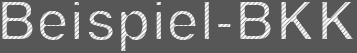 Logo Dies-ist eine-Beispiel-BKK-Landingpage